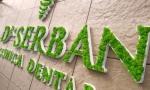 A1 litere cu licheni + logo firma
