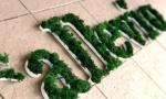 A14  litere PVC cu muschi si  licheni